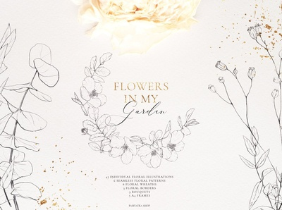 Wildflowers-Pencil sketch collection