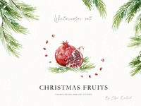 Christmas Fruits Watercolor Set