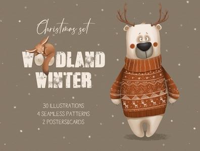 Woodland winter. Christmas set