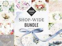 Shop-wide BUNDLE Watercolor &lineart