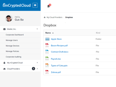 User Dashboard Concept ui interface dashboard admin dropbox ux flat