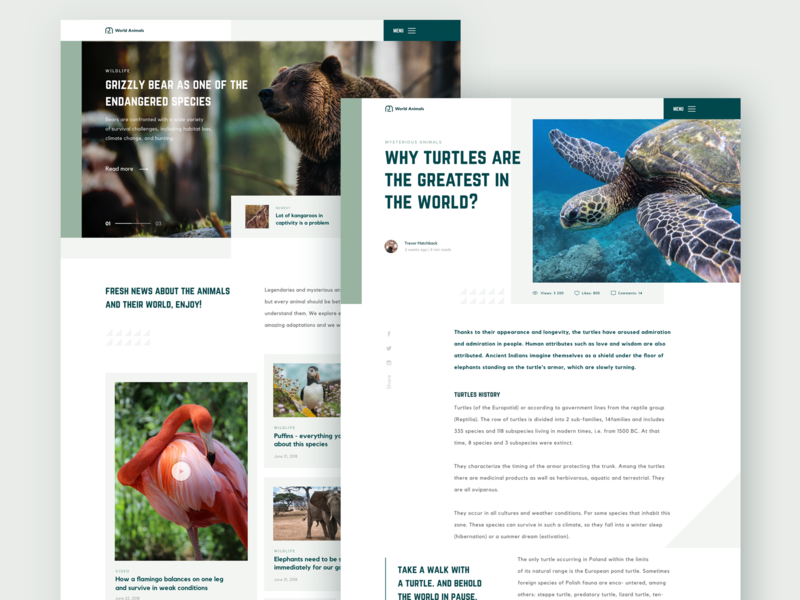Animals Blog Design product website blog design animals blog typography clean web design ux ui