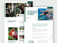 Animals Blog Design