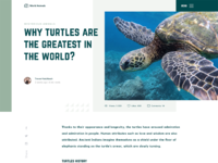 Animals blog design web article page