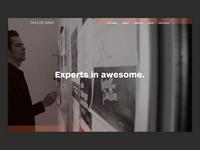 Tayloe/Gray Website
