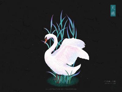 《飞鸟集》-白天鹅