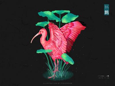 《飞鸟集》-红鹮