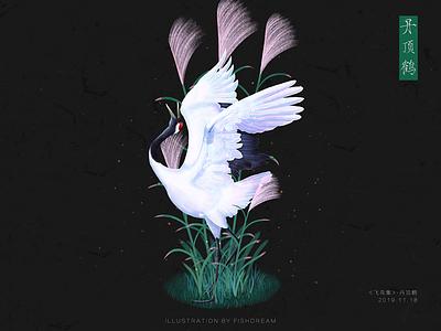《飞鸟集》-丹顶鹤💕 illustration