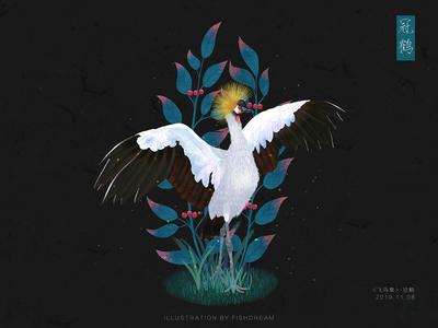 《飞鸟集》-冠鹤