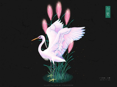 《飞鸟集》-白鹭