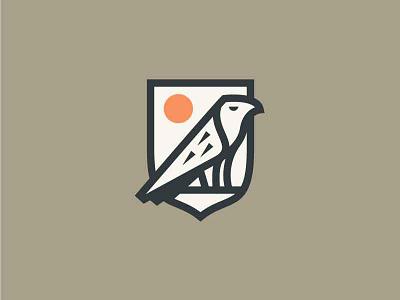 Osprey bird eagle