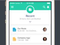 Salesforce Files