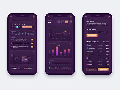 A budget tracking app tracking budget app responsive mobile ui interface modern web design ui  ux design concept design ui design