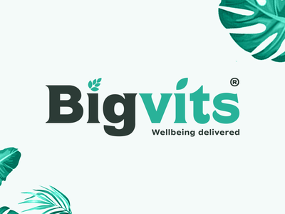 Bigvits logo font minimal simple brand logodesign design logo