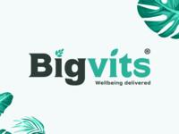 Bigvits logo