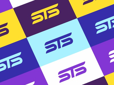 STS Identity + Color Palette crypto blockchain palette color monogram mark brand design logo identity sts