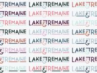 Lake & Tremaine brand design ampersand color palette color typographic logo typography logo typography logotype type logo type personal brand brand branding design branding logo design logo graphic design design