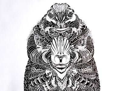 Mandrill art print tattoo ornaments black and white monkey portrait monkey art monkey hand drawing ornate animals nature ink art animal art mandrill