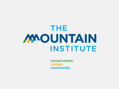 The Mountain Institute logo custom typography gold green blue tagline mountain logotype logo