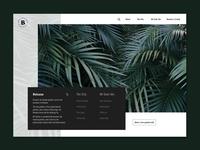 Brisbane Botanic Gardens - Invision Concept