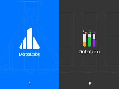 DataLabs Logo golden ratio logo mark logo design identity design branding symbol wordmark logo