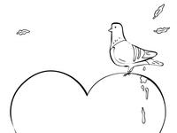Pigeon Valentine
