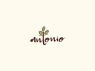 Antonio Logo Design typography tree leaf green brown vector graphic design typeface illustrative logotype design branding logo illustration coffee