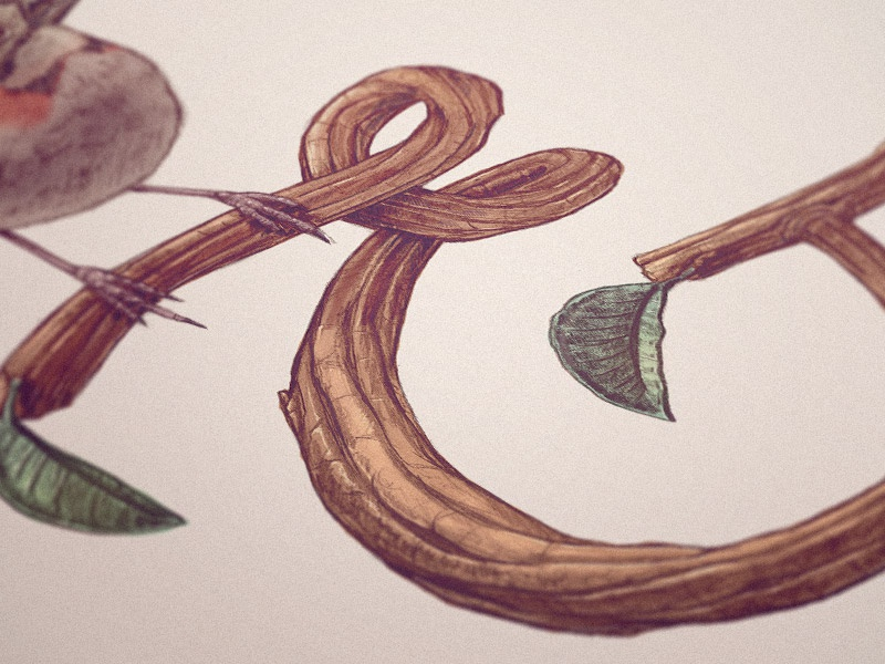 ... & pencil wood branch leaf bird ampersand lettering