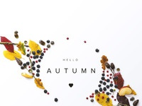 Hello autumn hres