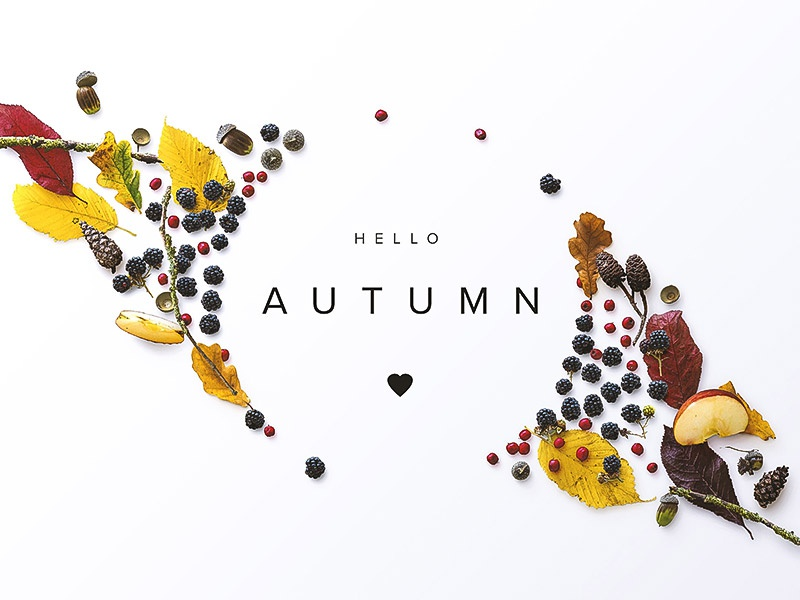 Hello Autumn scene generator custom scene flatlay fall autumn
