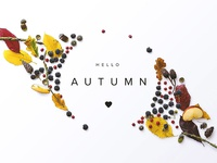 Hello Autumn scene generator custom scene flatlay fall autumn