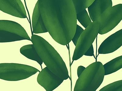 Plants green drawing plants texture illustration