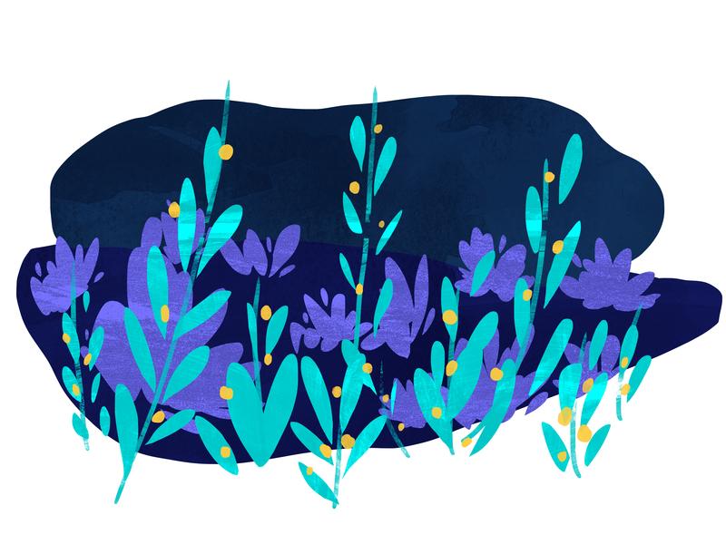 Seaberries design illustration