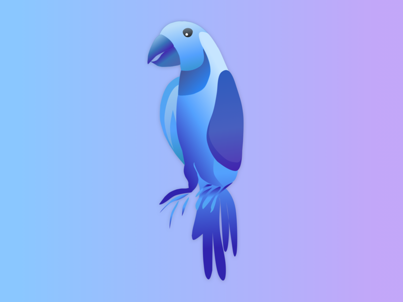 Parrot logo design illustration parrot