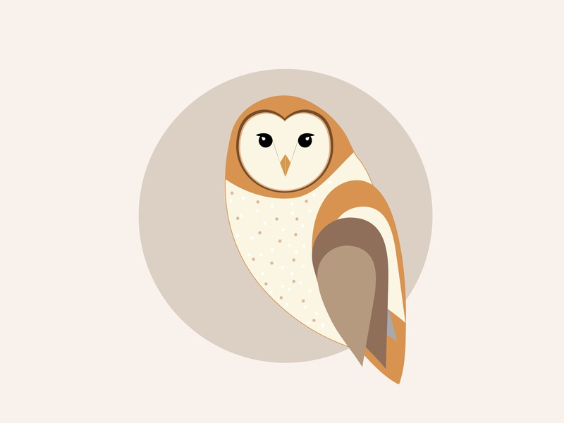 Vector Owl Illustration illustrator vector artwork vector graphics advertising design logo graphic design illustration vector art owl logo owl illustration owl