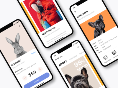 Adopt, Don't Shop animal shelter portfolio donate purchase french bulldog dog animals help support charity donations donation adoption shelter mobile ui animal pet adopt mobile app