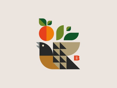 Nyoni - a bird shot first bird shapes pattern illustration geometric colour art