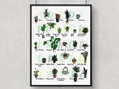 Houseplant Alphabet poster greenery a-z alphabet print art illustration pen ink succulents plants watercolor vector