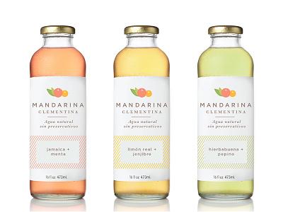 Packaging for Mandarina Clementina serif pink beer pastel illustration fruit bottle label identity branding logo packaging