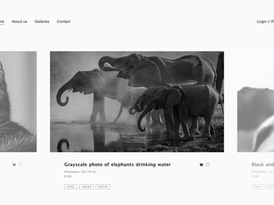 Website photographies cart elephants website design website black and white blackandwhite black  white ecommerce animal photo photography webdesign web design
