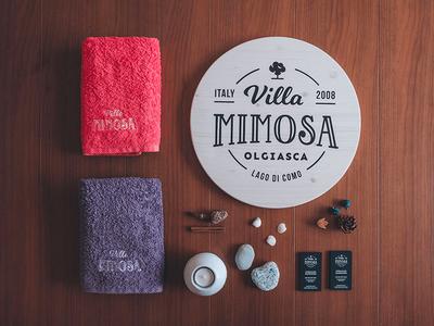 Villa Mimosa logo & interior photography photography typographic logo typography logo logo badge apartmant lombardy italy villa