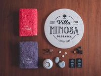 Villa Mimosa logo & interior photography