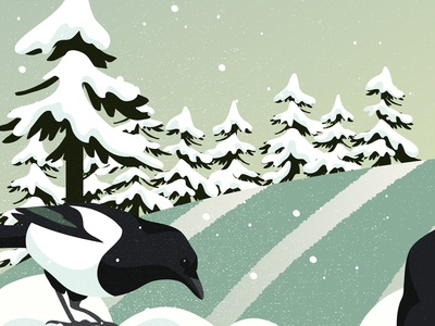 Magpies and snow II