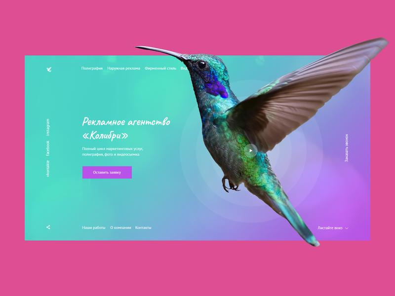 Colibri marketing agency v.2 fly bird colibri