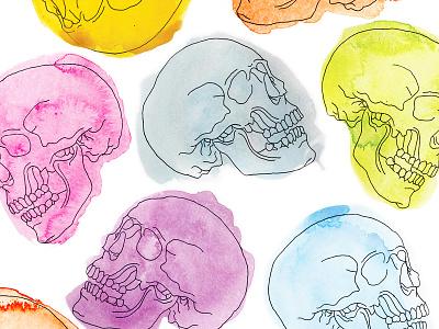 Skull Pattern illustration watercolor skulls