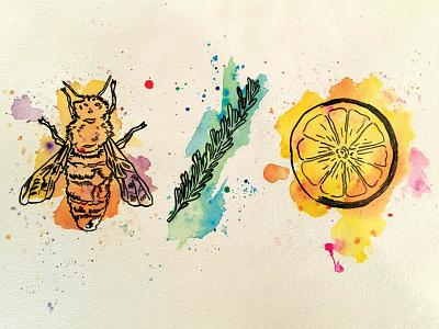 Rosemary Lemonde illustration
