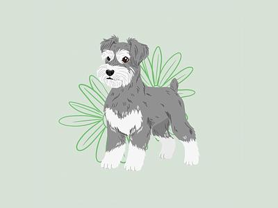 Doggust 2020 | Miniature Schnauzer illustration doggust digital art animals procreate