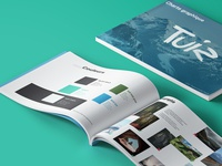 Brand guide - Tuiz
