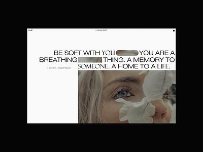 LANÉ helvetica portfolio minimal photography typography website web design ux ui