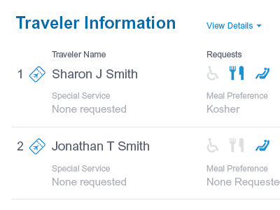 Traveler Information responsive desktop corporate icons arial information ui flight travel